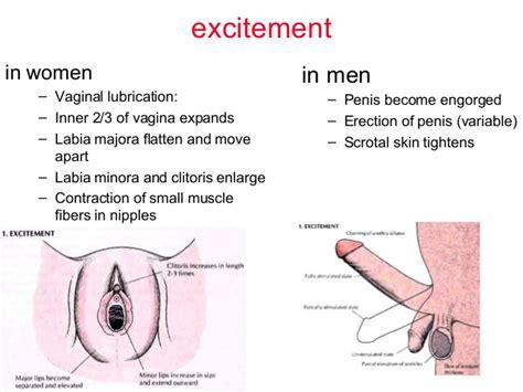 Sex breasts enlarge jpg 638x479