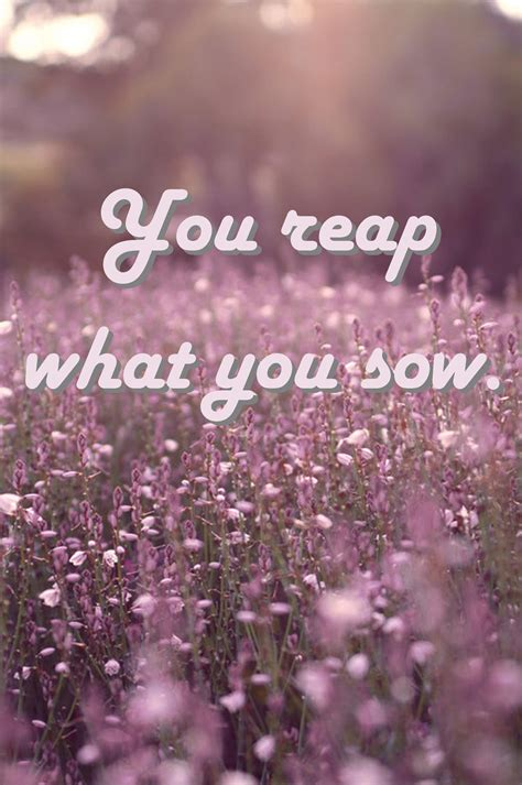 As you sow shall you reap essay jpg 2382x3588